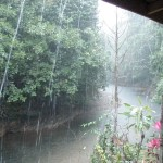 Torential downpour around 4pm every day